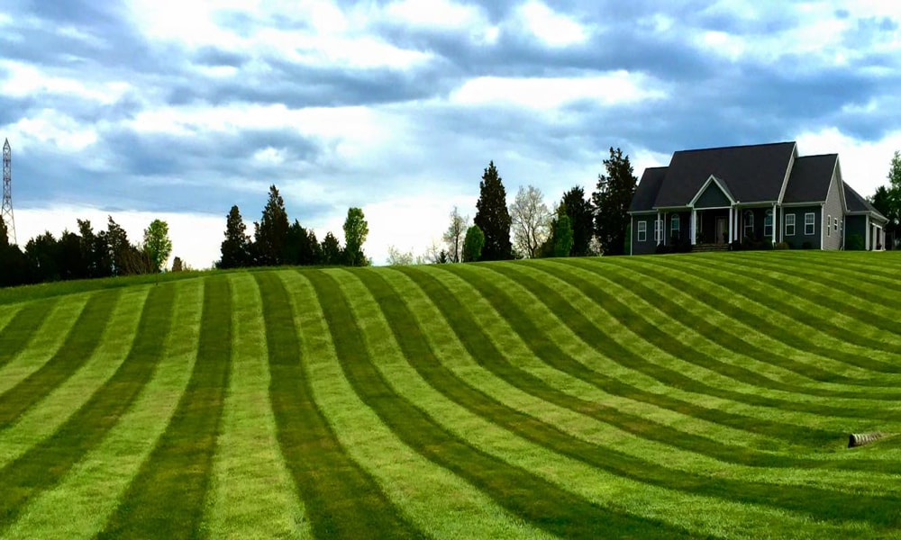 Big League Lawns, LLC | Lawn Striper | Lawn Striping Kit | Yard Roller